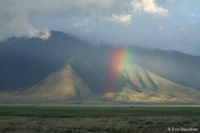 Rainbow above the territory of the Triangle Clan