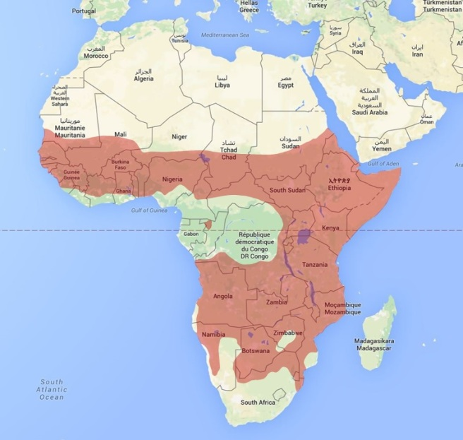 Hyena distribution map